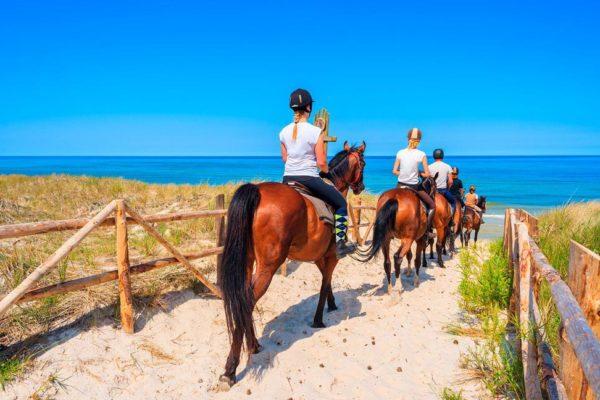 activites-sud-corse-equitation-plage